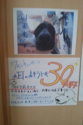 2011-07-31-10-09-22-578.jpg