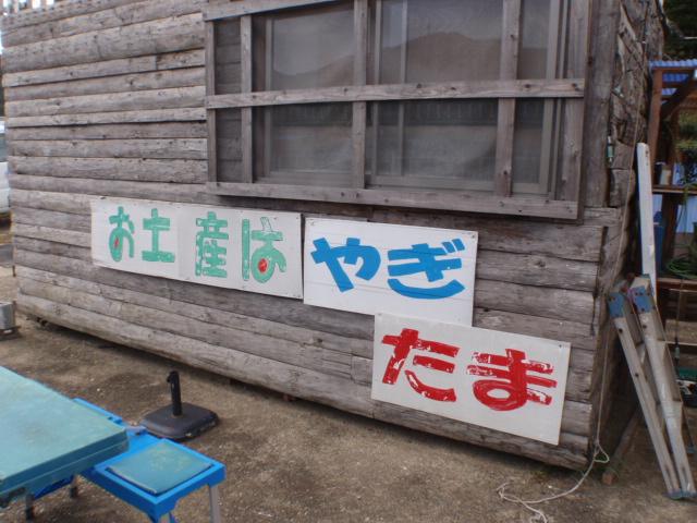010_20111003062614.jpg