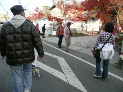 032_20101205234745.jpg