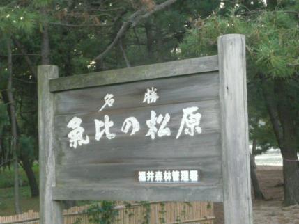 037_20110920091848.jpg