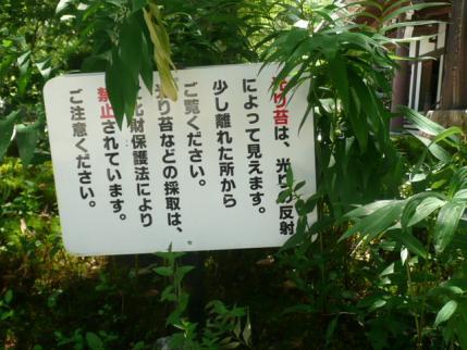 056_20110723091210.jpg