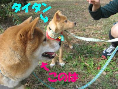 2ヒキ_convert_20091101205338