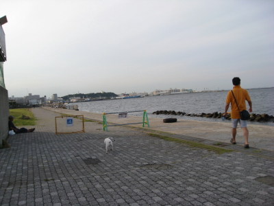 yokosuka walking
