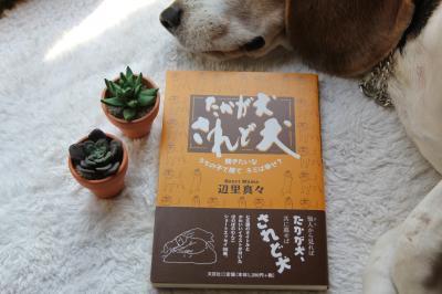 2011-0525-henmamabook.jpg
