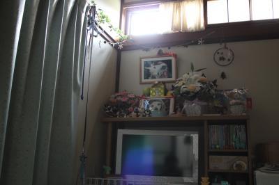 2011-0527-saidan01.jpg