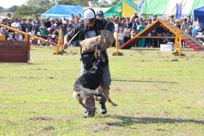 dog-20111009-nakasu02.jpg