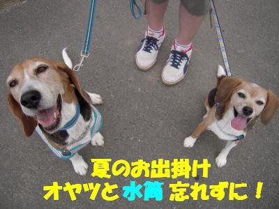 friai-20110707-atumi02.jpg