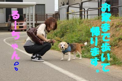 rookie-20110528-cafe03-nenesan.jpg