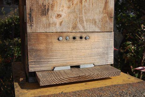 日本蜜蜂寒さ対策(巣門)
