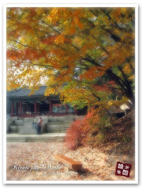 korea2009_1_20110615183608.jpg