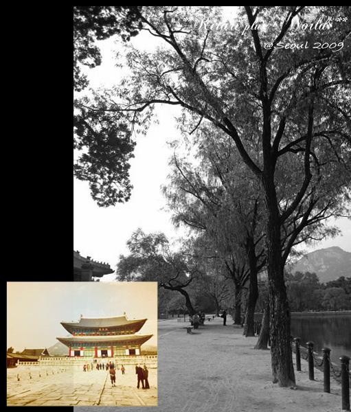 korea2009_31.jpg