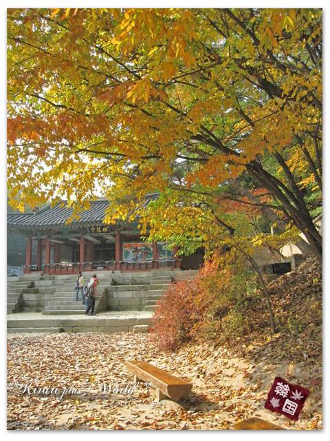 korea2009_44.jpg