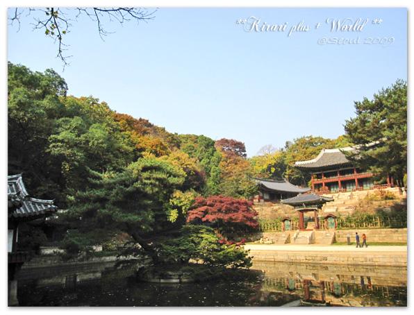korea2009_45.jpg