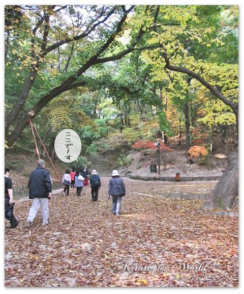 korea2009_46.jpg