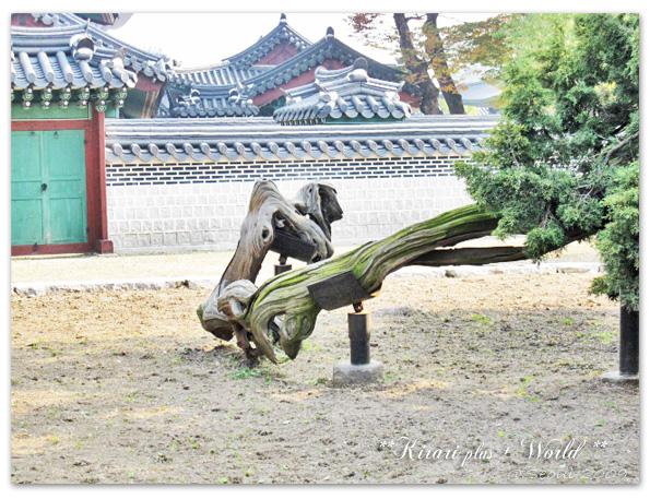 korea2009_47.jpg
