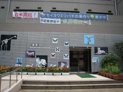 2011_06_10_4.jpg