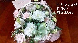 s-チキママよりのお花