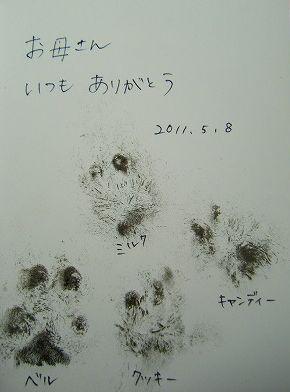 s-1105090007.jpg