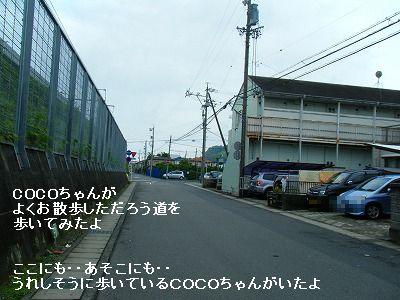 s-1106180059.jpg