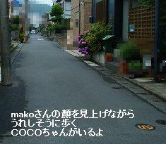 s-1106180063.jpg