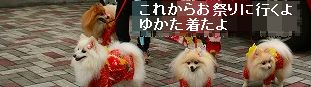 s-IMG_0067.jpg