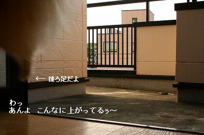 s-IMG_0202.jpg