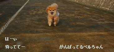 s-IMG_0358_20110910231152.jpg