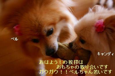 s-IMG_7442.jpg