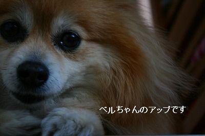 s-IMG_8940.jpg