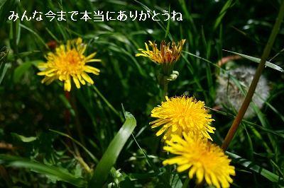 s-IMG_9296.jpg