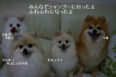 s-IMG_9415.jpg