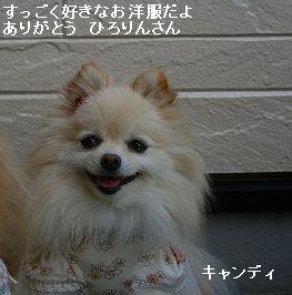 s-IMG_9739.jpg