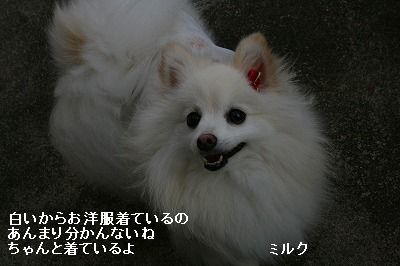 s-IMG_9745.jpg