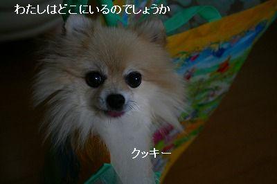 s-IMG_9828.jpg