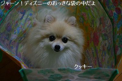 s-IMG_9831_20110805000635.jpg