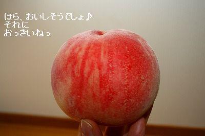 s-IMG_9874.jpg