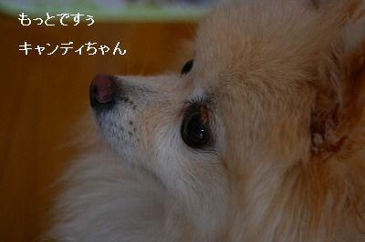 s-IMG_9887.jpg