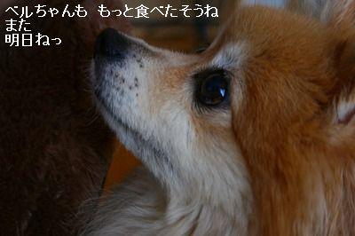 s-IMG_9888.jpg