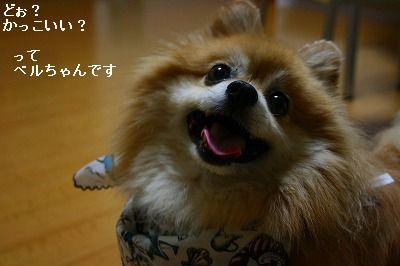 s-IMG_9907_20110814225247.jpg