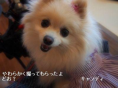 s-P5190326.jpg