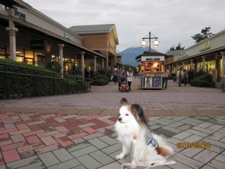 後ろは富士山