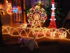 2010yamashita3.jpg