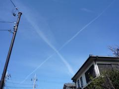 crosskumo.jpg