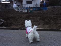 kenchikugenbadaisuki21.jpg