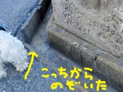 sokkochosadeochita3.jpg