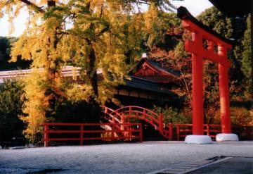 torii to iteu