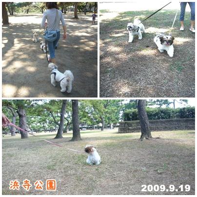 090919_20_park_02.jpg