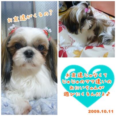 091011_ju_seito_01.jpg