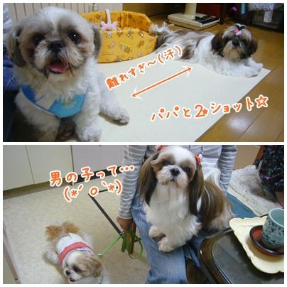 091011_ju_seito_04.jpg