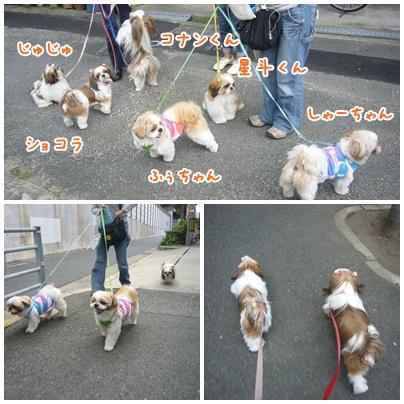 091011_ju_seito_05.jpg